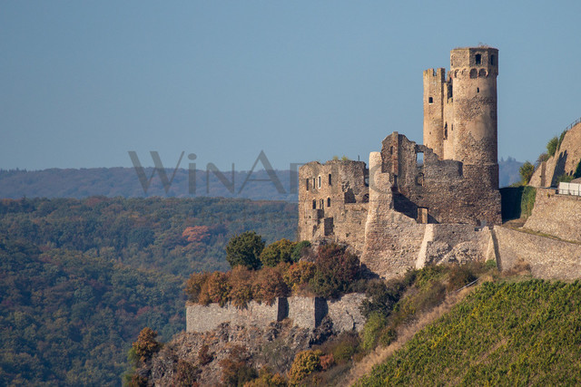 The ruins of the castle Ehrenfels in Germany | The ruins of the castle Ehrenfels near the rhine river in Germany