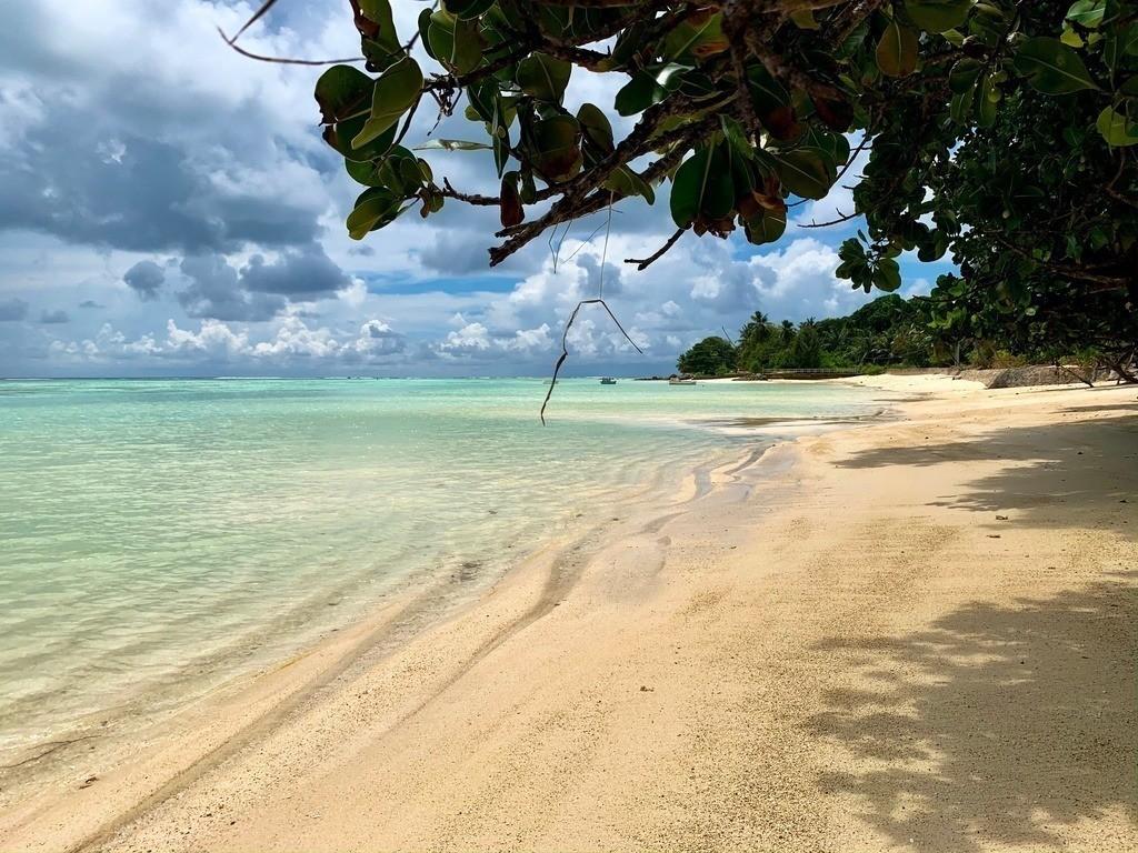 Einsamer Strand auf den Seychellen  | Türkises glasklares Wasser auf den Seychellen