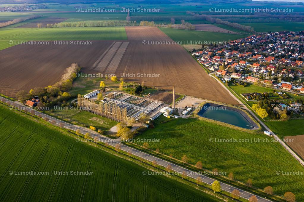 10049-50257 - Alte Gärtnerrei bei Halberstadt