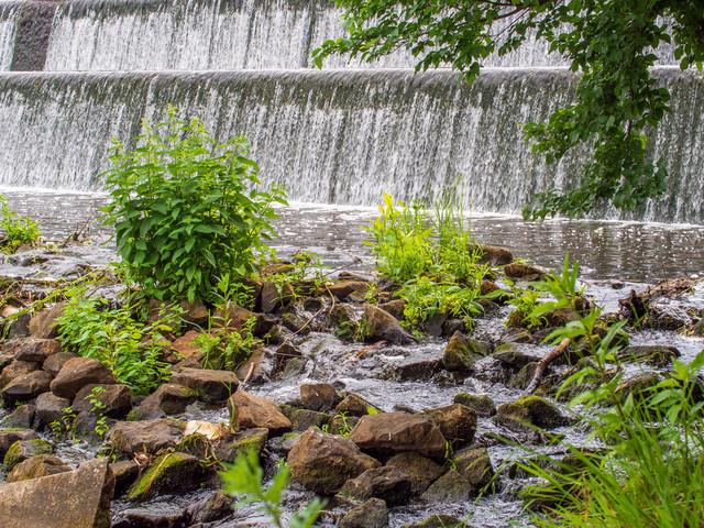 Celle (45) | Celle und Umgebung