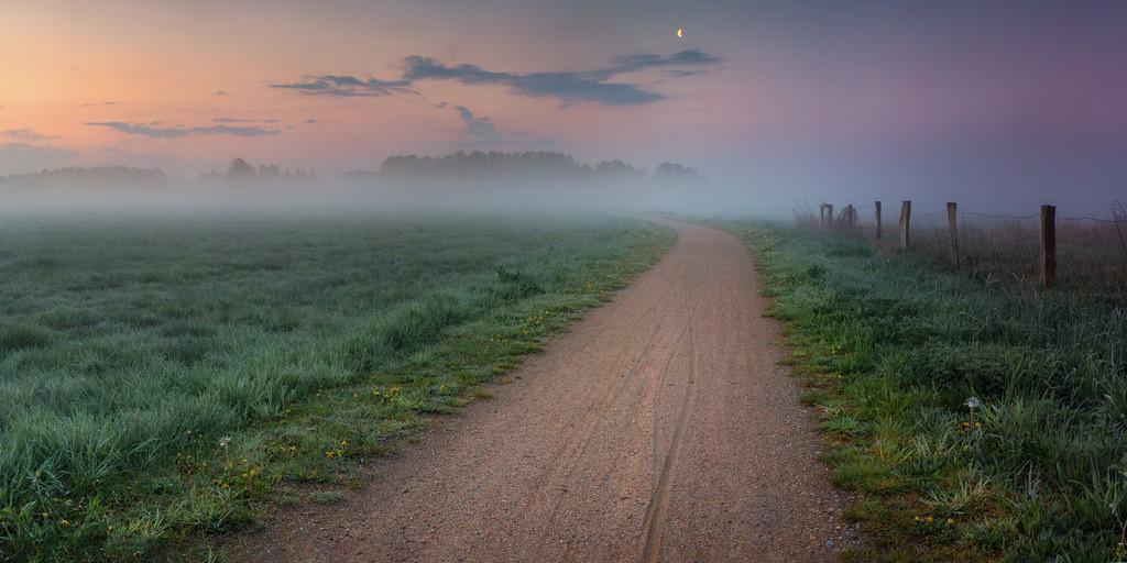 Der Weg in den Wiesen   Morgens bei Sonnenaufgang in den Hammewiesen.