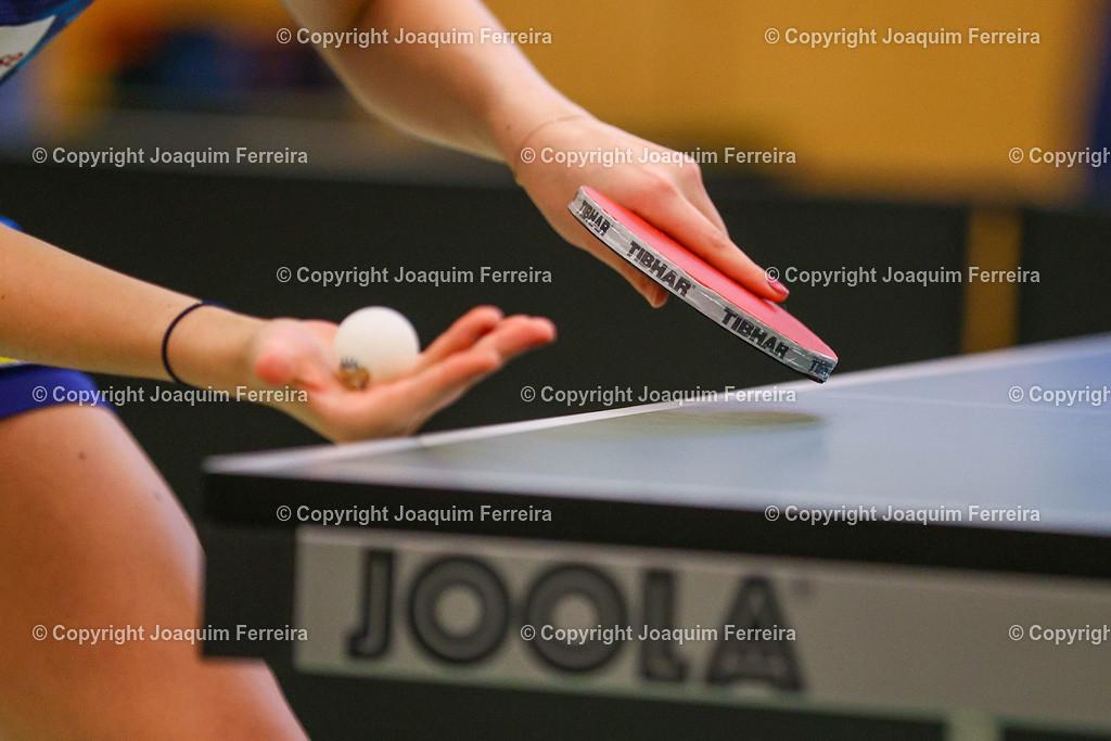 201219_tsvvsboe_0702 | despor 19.12.2020 Tischtennis Damen 1.BL TSV Langstadt - SV Böblingen emspor, emonline, oespor,  v.l., Symbolbild: Tischtennisschläger, Ball  Foto: Joaquim Ferreira
