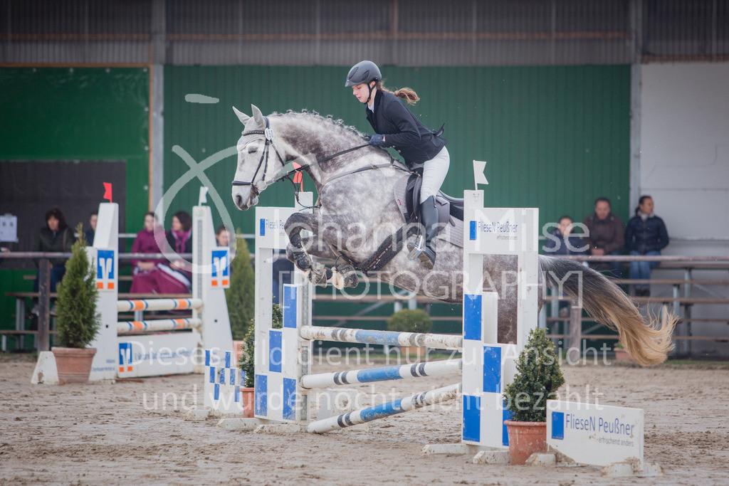 190406_Frühlingsfest_StilE-048 | Frühlingsfest der Pferde 2019, von Lützow Herford, Stil-WB mit erlaubter Zeit