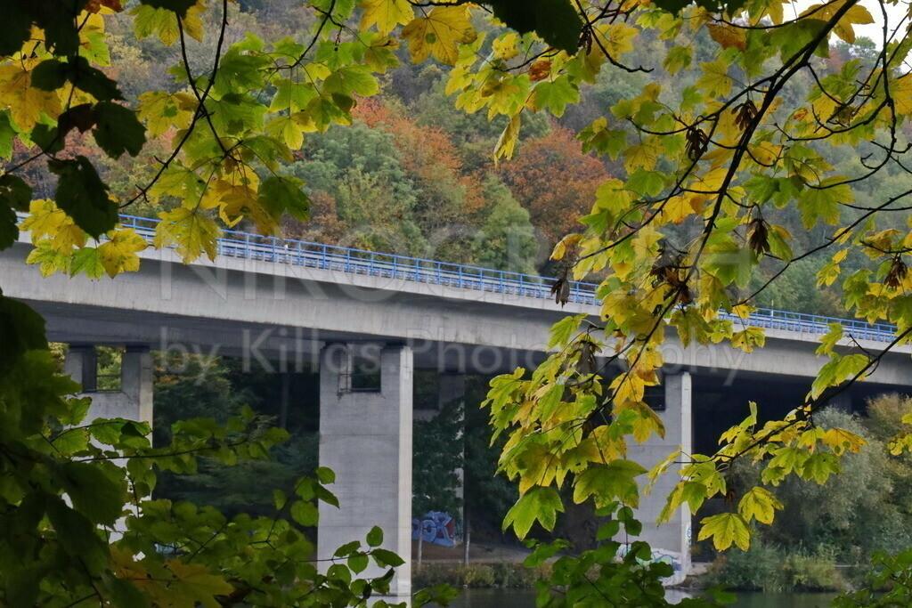 Autobahnbrücke am Seilersee | Die Autobahnbrücke am Seilersee in Iserlohn hinter der herbstlichen Blätterkulisse.