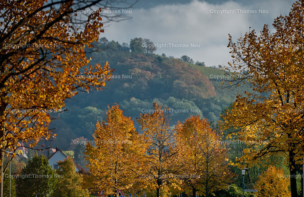Herbst | ,;BIld: Thomas Neu