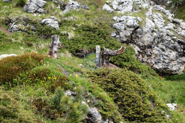 Sellamassiv Sella Ronda Landschaft | ITA, Italien, Südtirol, Dolomiten, Sella Rondo, 15.07.2014, Sella Rondo Landschaft