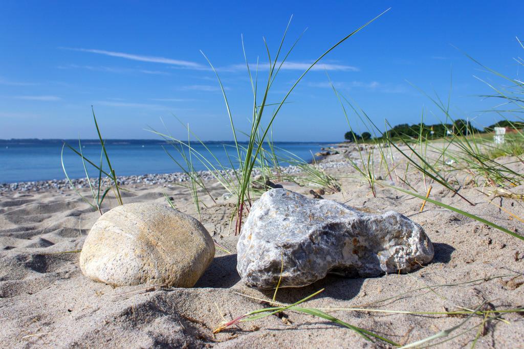 Strand in Langholz   Steine und Strandgras am Strand von Langholz