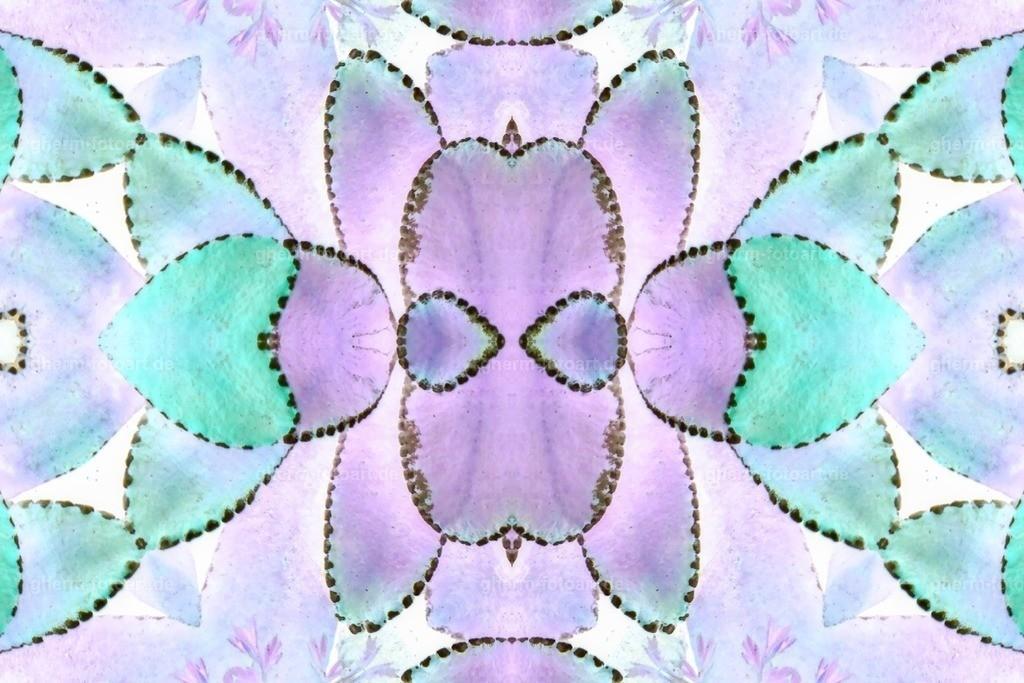 P1130154-LR-thebiginverter-LR-ausgefleckt-kaleidoskop-random-heller
