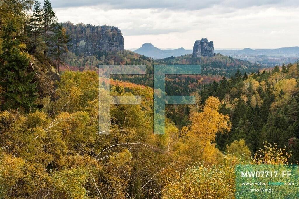 MW07717-FF   Deutschland   Sachsen   Sächsische Schweiz   Felsformationen Schrammsteine und Falkenstein, die vom Herbstwald umgeben sind. In der Bildmitte: Tafelberg Lilienstein.   ** Feindaten bitte anfragen bei Mario Weigt Photography, info@asia-stories.com **