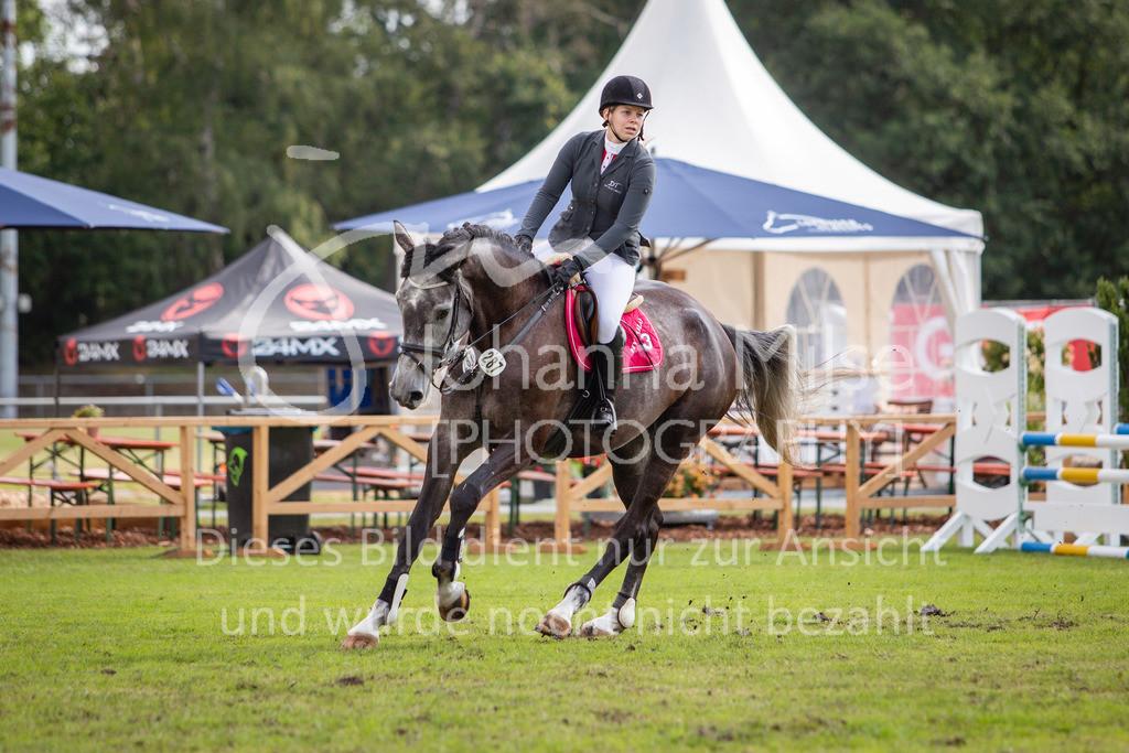 190719_LC_SprPf-A-026 | Lopshorn Classics 2019 Springpferdeprüfung Kl. A** 4-5 jährige Pferde