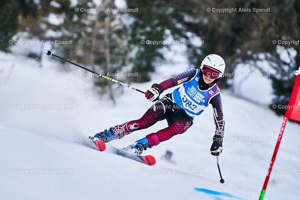 ALS5596_WWMG_GS-II_C   (C) FotoLois.com, Alois Spandl, WinterWorldMastersGames 2020 Innsbruck, Giant Slalom-II Gruppe C Damen, Patscherkofel Olympiaabfahrt, Mi 15. Jänner 2020.