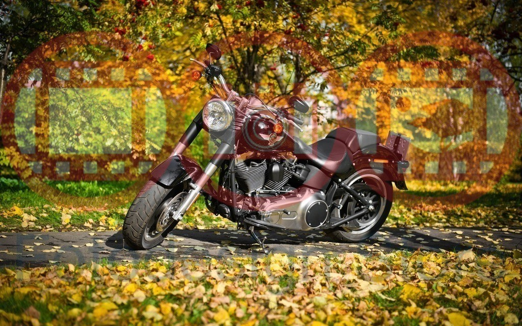 Motorcycles_0018