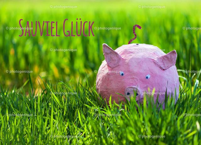 Glücksschwein Sauviel Glück | Postkarte Grußkarte Neujahrskarte rosa Glücksschwein sitzt im grünen Gras und wünscht sauviel Glück