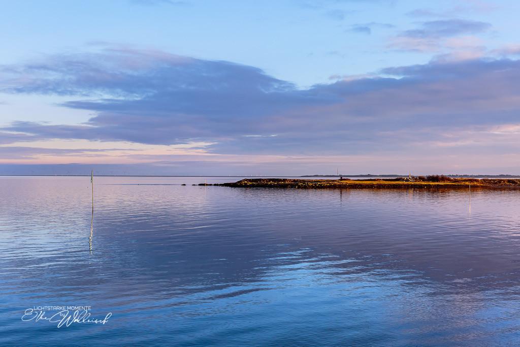reflection | Braderup, Slyt
