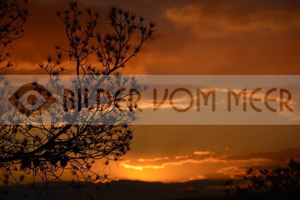 Bilder Sonnenuntergang Spanien | Sonnenuntergang in der Steppe