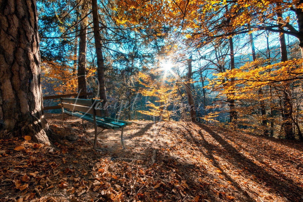 Am Bergisel | Herbst in der Sillschlucht