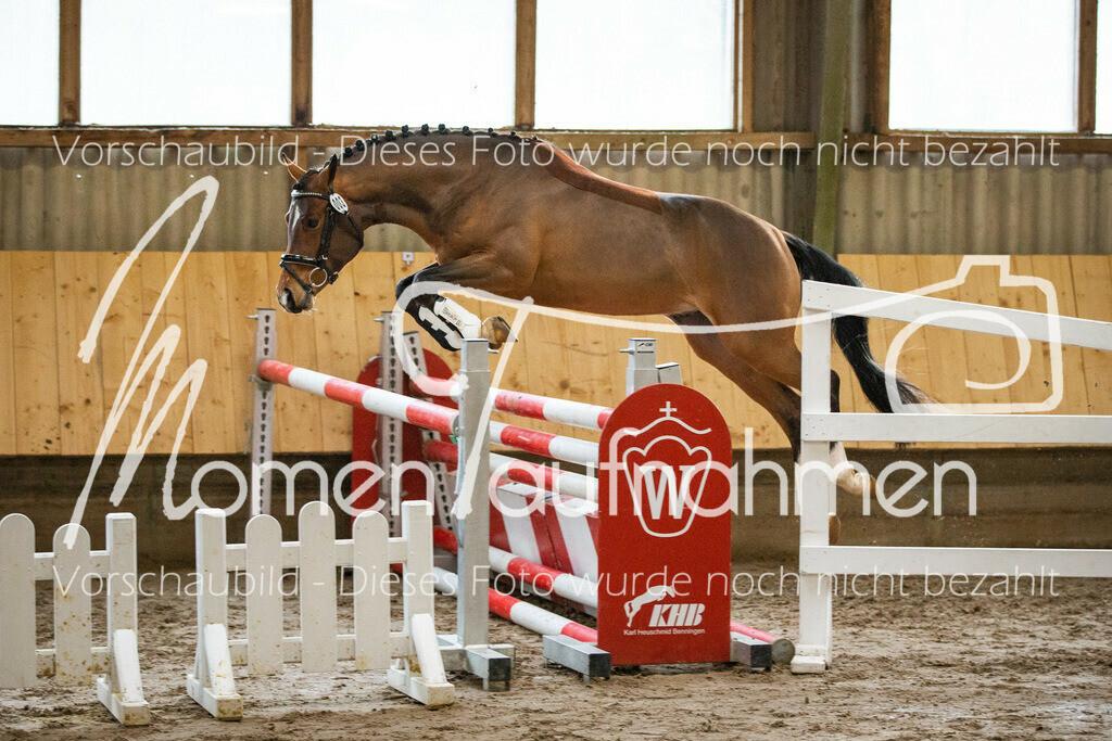 Freispringen-Pony-3j-20