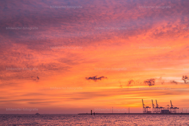 Sonnenaufgang Jade-Weser_port | Sonnenaufgang am Jadebusen mit Blick auf die Containerbrücken des Jade-Weser-Ports in Wilhelmshaven