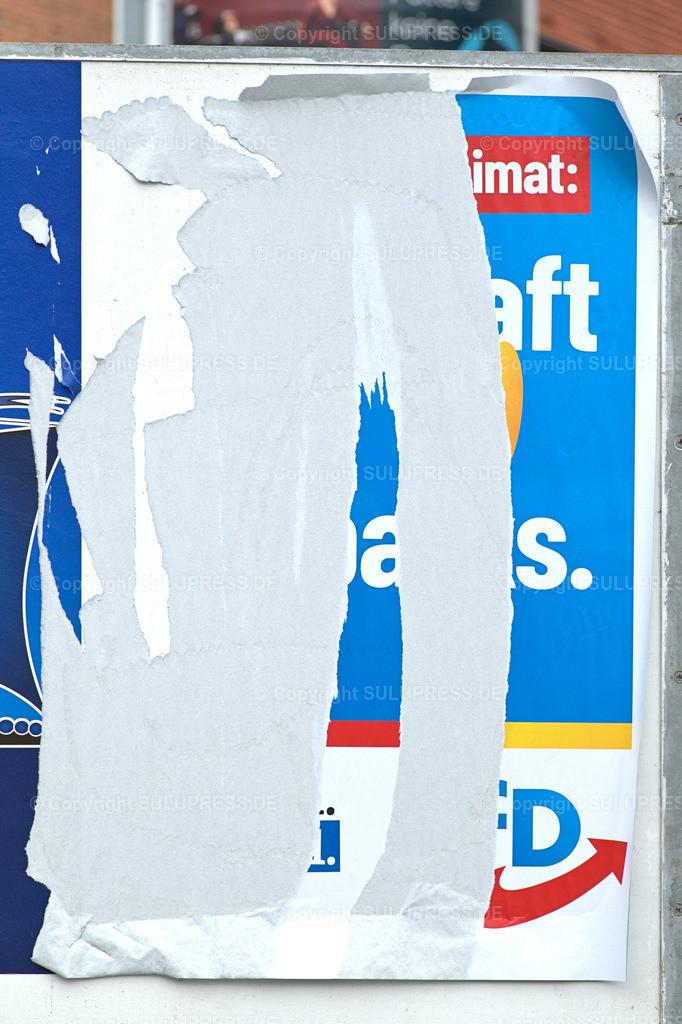 Abgerissenes AfD Wahlplakat in Schleswig | Schleswig, ein abgerissenes Wahlplakat der Alternative für Deutschland (AfD) an einer Werbetafel für Wahlwerbung.