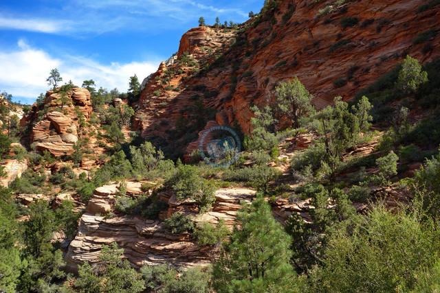 Utah Bryce Canyon   USA, USA, Utah, 03.08.2012, Utah Bryce Canyon, © 2012 Christoph Hermann, Bild-Kunst Urheber 707707