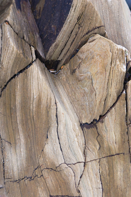 Kombination 11 | Fels Holz, Erde und Metall