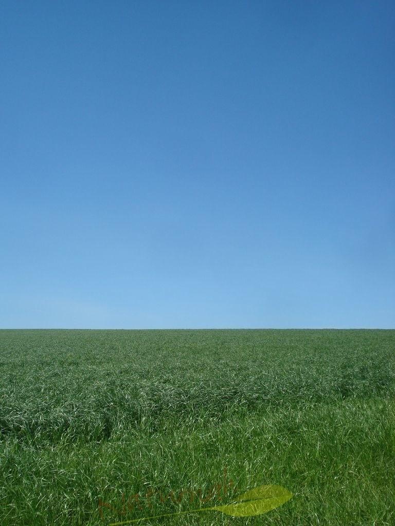 Blaugrüne Auszeit