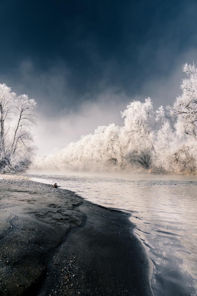 Eisblaue Enns   Die Morgensonne erwärmt die mit Eis bedeckten Bäume am Ufer der Enns.