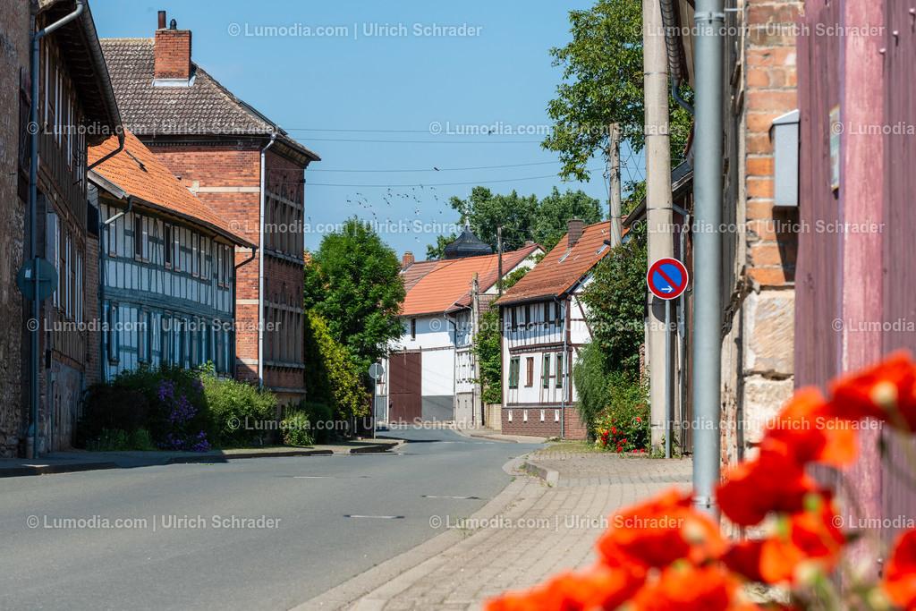 10049-11050 - Eilsdorf _ Gemeinde Huy | max. Auflösung 7360 x 4912