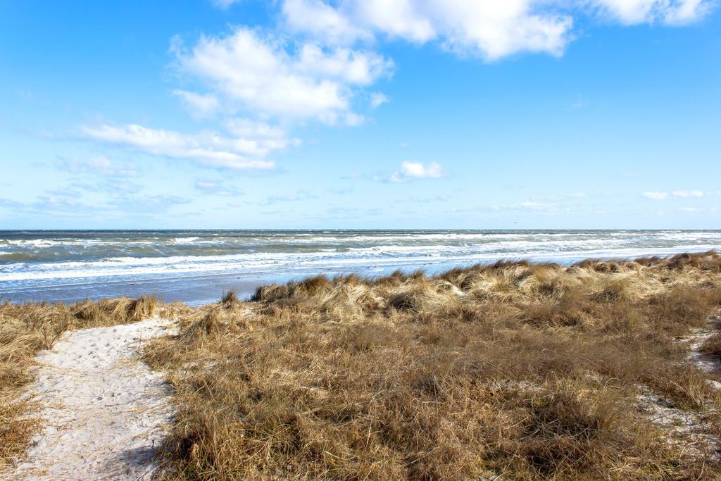 Strand in Kronsgaard | Weg zum Strand in Kronsgaard im Winter