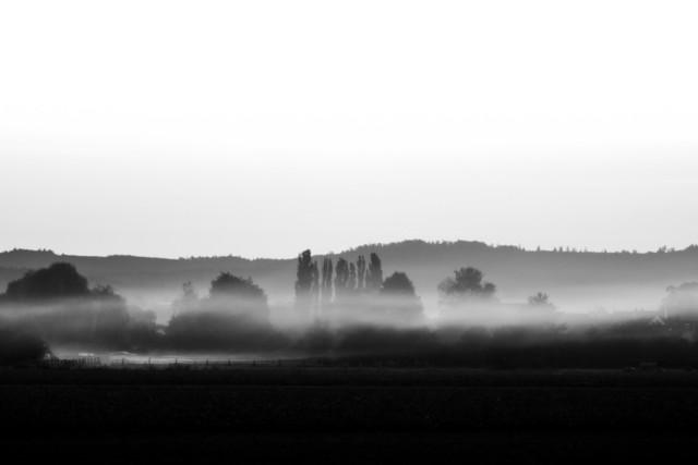 nebel-3008