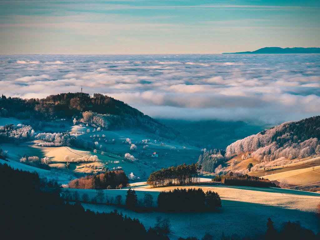 Schwarzwald | Inversionswetterlage bei Freiamt