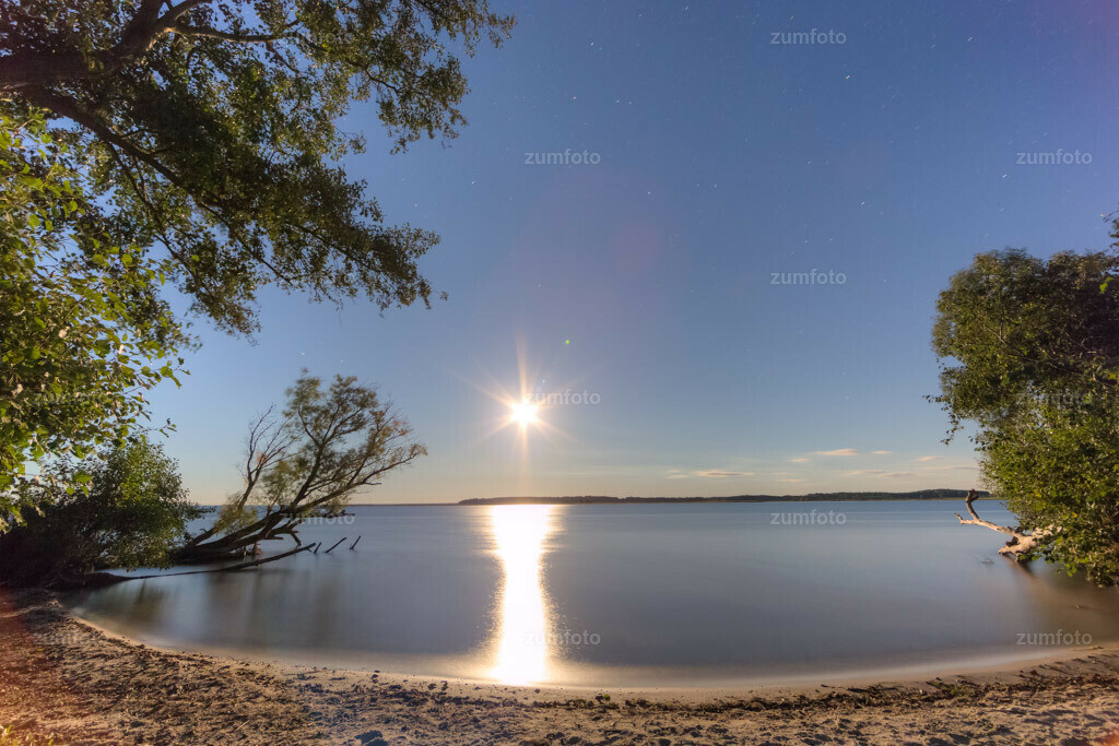 0-150928-0184 | Dateigröße 5748 x 3832 Pixel Mondaufgang über der Müritz mit Sandstrand, Erlen und umgekippter Weide