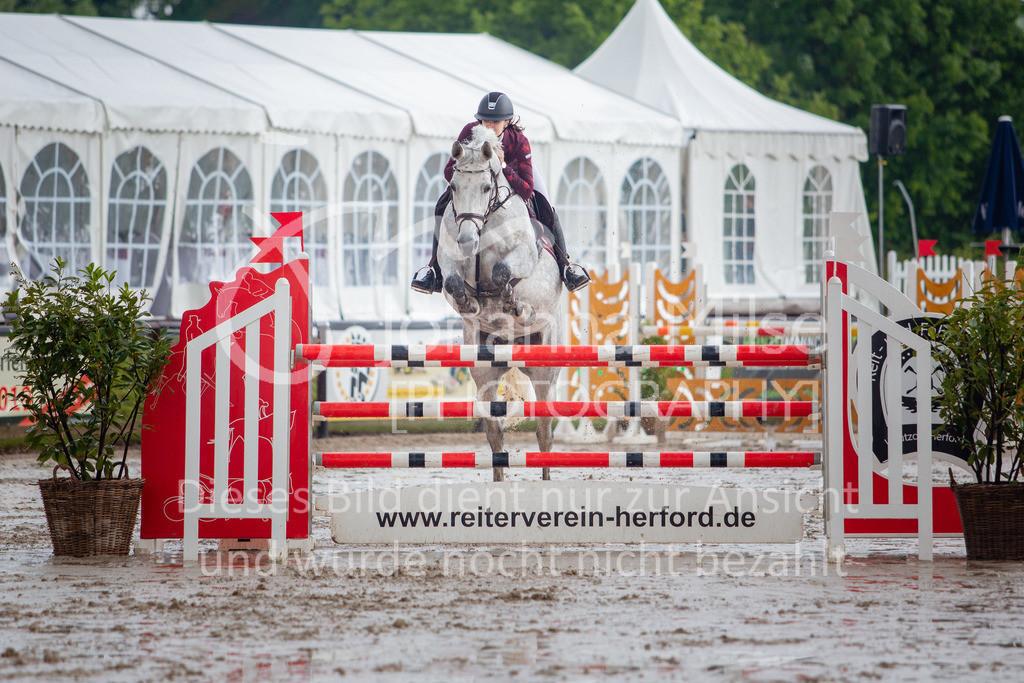 190524_LüPfSpTa_M-Spr-622 | Pferdesporttage Herford 2019 Springprüfung Kl. M*, regional