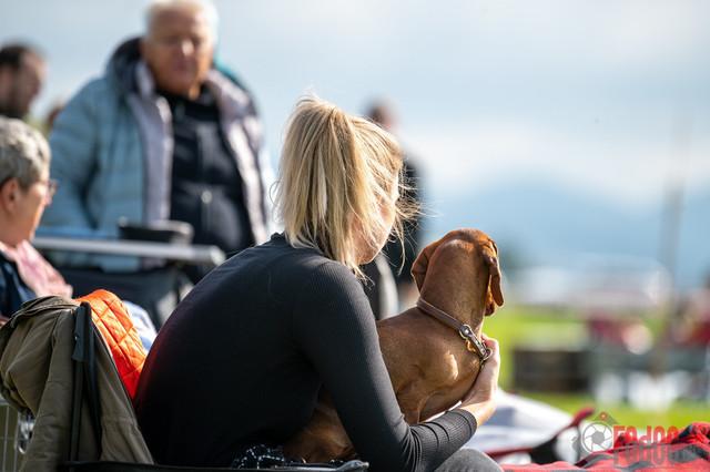 {event}   CACIB Fehraltorf Autumn Swiss Dog auf der Pferderennbahn in Fehraltorf  08.10.2021 Foto: Leo Wyden
