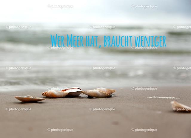 Postkarte Urlaubskarte Wer Meer hat, braucht weniger | Postkarte mit Muscheln am Strand bei Tageslicht und Spruch: Wer Meer hat braucht weniger