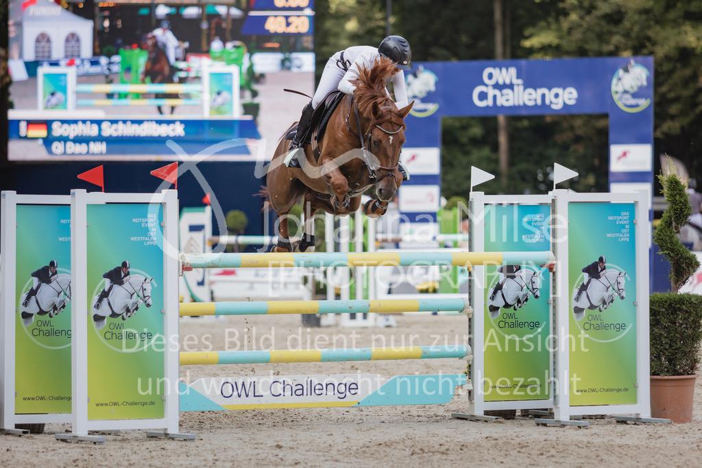 210912_OWLCh_YoungsterTrophy_7j-442 | FUNDIS Youngster Tour (CSIYH1*) 1. Qualifikation für 7jährige Pferde international 1,35m