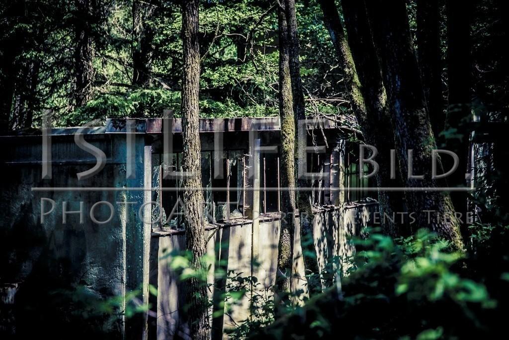 Röslau - Mittelpunkt des Fichtelgebirges | Alte Pappenfabrik am Thus