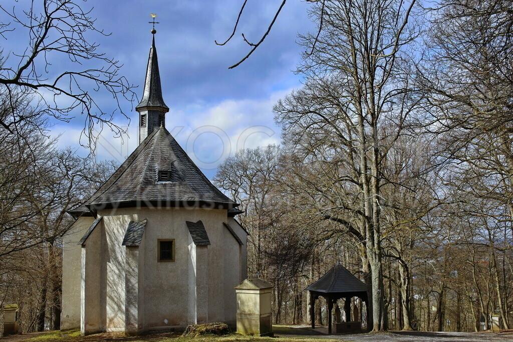 Heilig-Kreuz-Kapelle in Menden | Die Heilig-Kreuz-Kapelle liegt im Wald auf dem Rodenberg. Die traditionelle Mendener Kreuztracht führt durch die Stadt über den Rodenberg, an der Heilig-Kreuz-Kapelle vorbei. Der denkmalgeschützte Sakralbau wird auch St.-Antonius-von-Padua-Kapelle genannt.