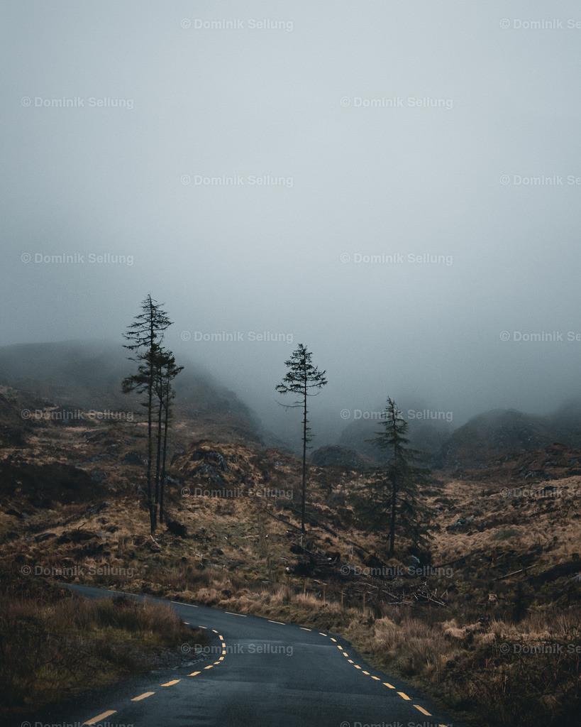 Kells | Wenn der Nebel an Raum gewinnt