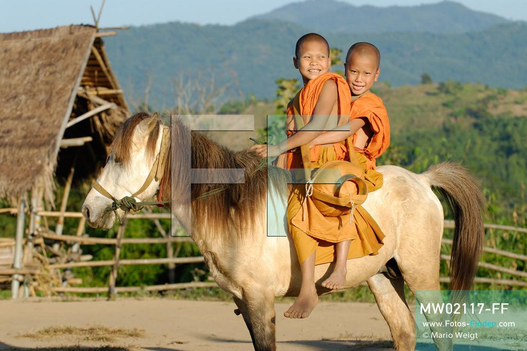 MW02117-FF   Thailand   Goldenes Dreieck   Reportage: Buddhas Ranch im Dschungel   Die jungen Mönche Sornchai und Abe auf einem Pferd  ** Feindaten bitte anfragen bei Mario Weigt Photography, info@asia-stories.com **