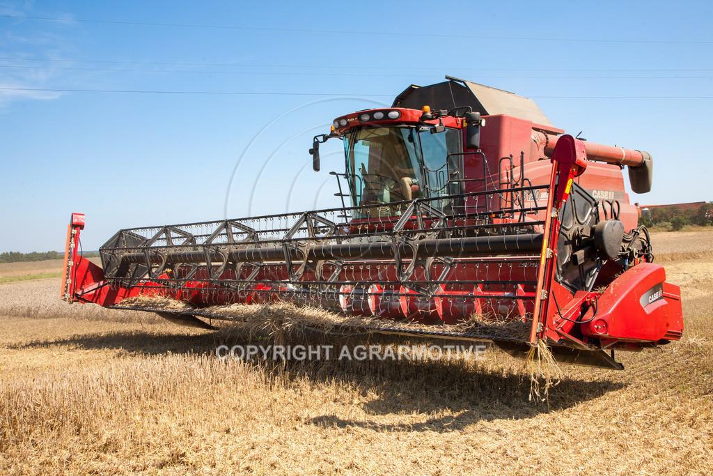 20110804_0370 | Mähdrescher bei der Weizenernte