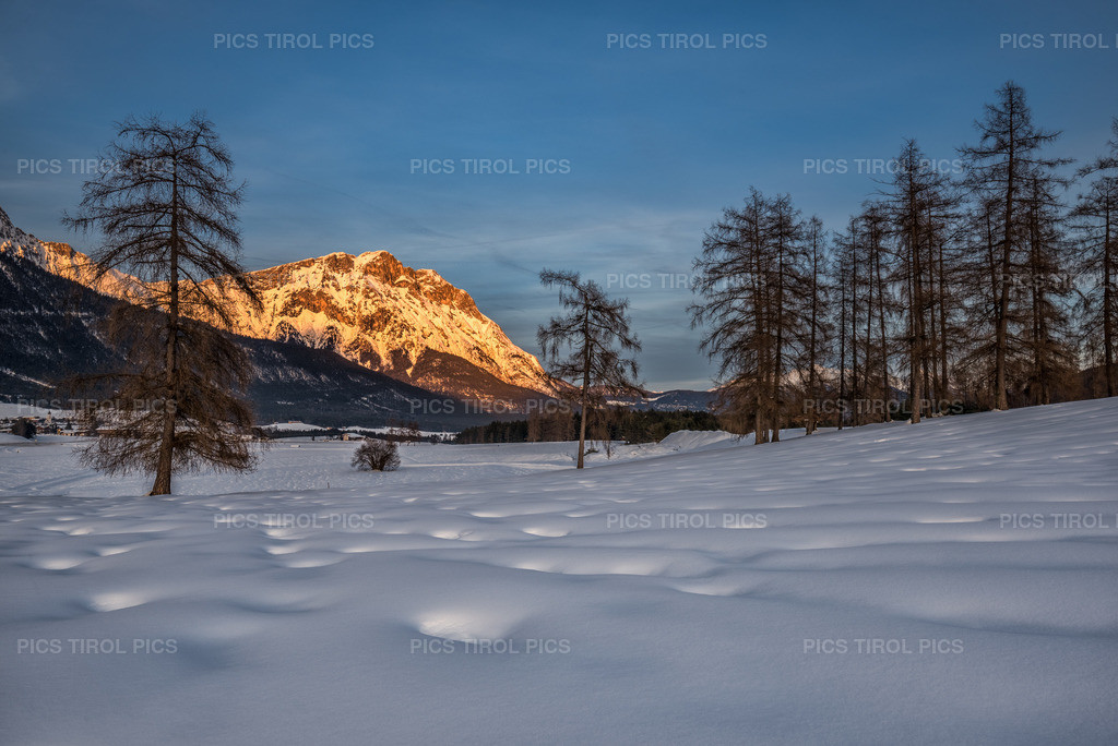 Hohe Munde im Abendrot | Mieminger Plateau