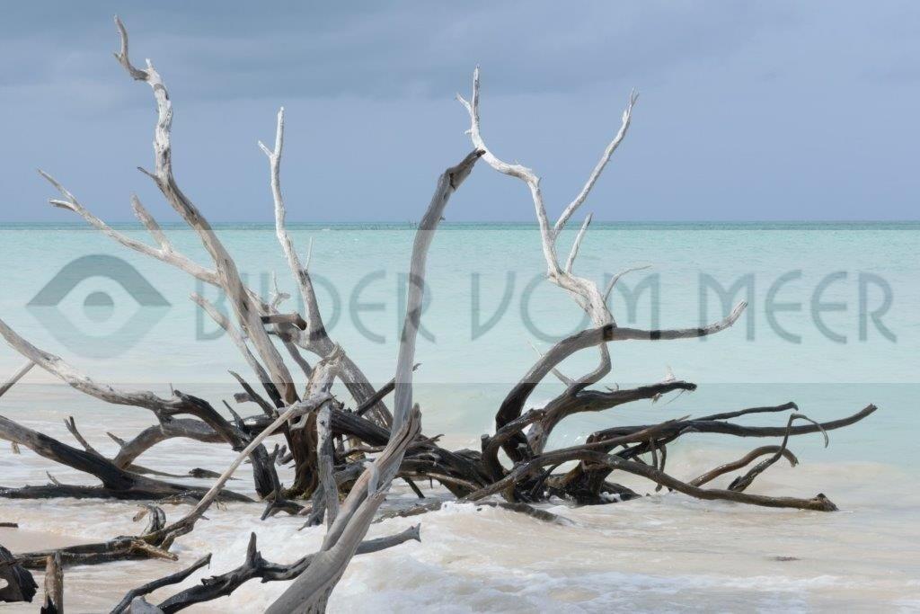 Bilder vom Meer aus Kuba | Strandbild von der Insel Cayo Jutías