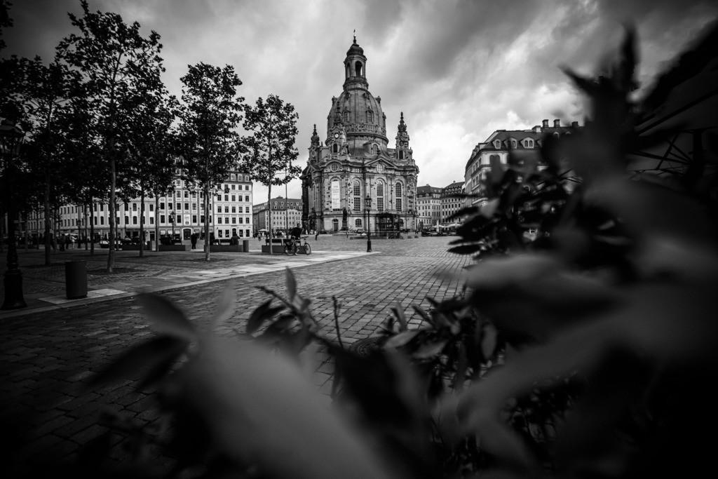 Dresden Tom Thiele (27)