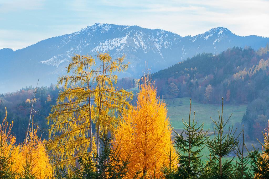 Hochriesblick im Herbst