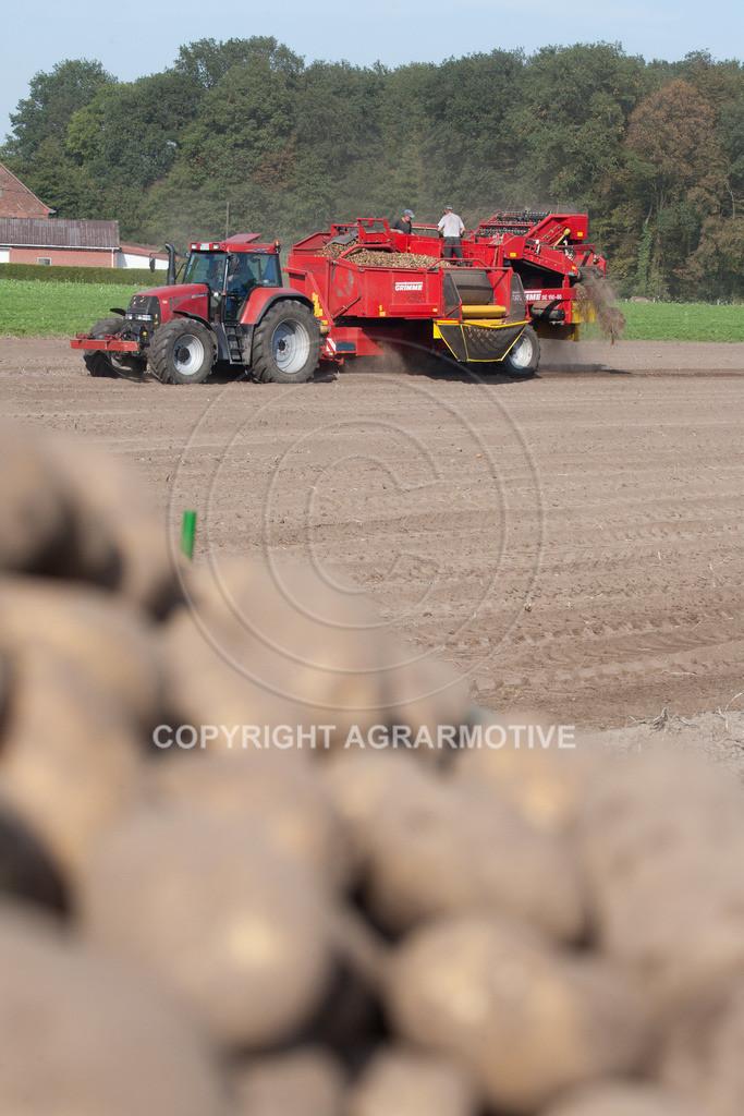 20110929-IMG_6031 | Ernte auf einem Kartoffelfeld - AGRARBILDER