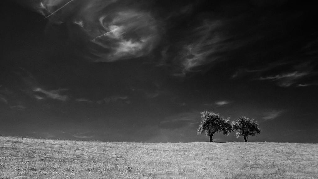 Couple Under Black Skies