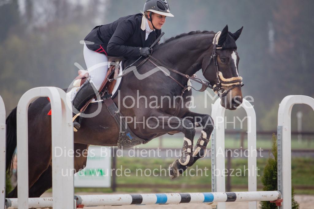 190404_Frühlingsfest_Sprpf-A-106 | Frühlingsfest Herford 2019 Springpferdeprüfung Klasse A**