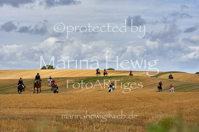 Jagd Knoop 217500_Marina Hewig
