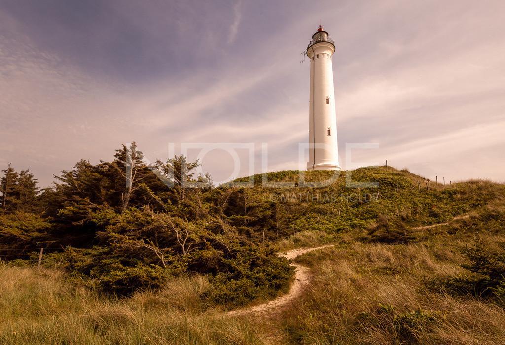 Leuchtturm Lyngvig Fyr am Abend | Nördlich von Hvidesande an der dänischen Nordseeküste